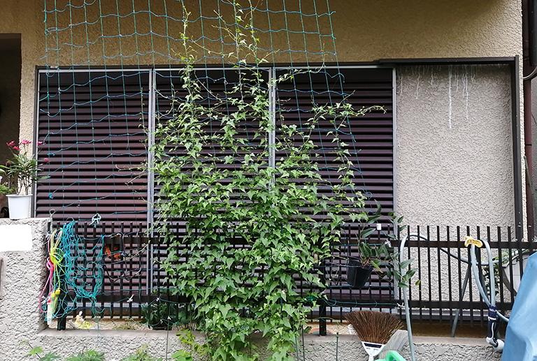お客様から送付いただいた設置前の窓の写真